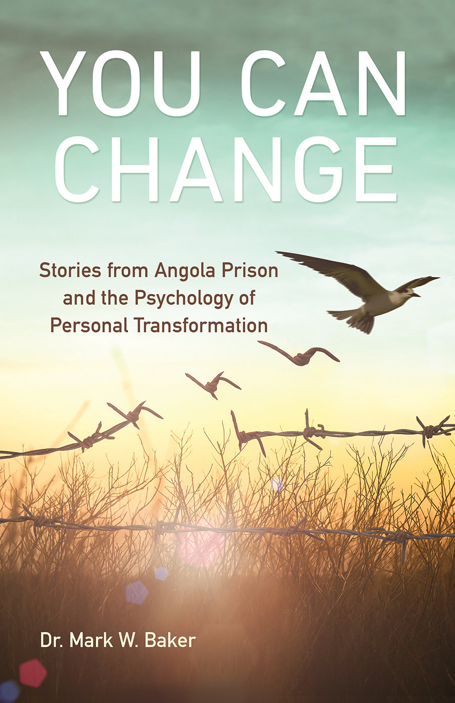 You Can Change: Stories from Angola Prison and the Psychology of Personal Transformation